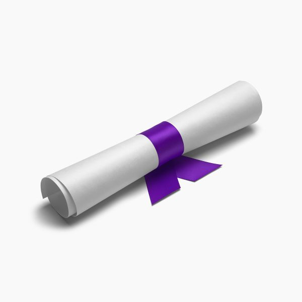 Diploma tied with purple ribbon on a white isolated background.
